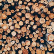 drewno-konstrukcyjne
