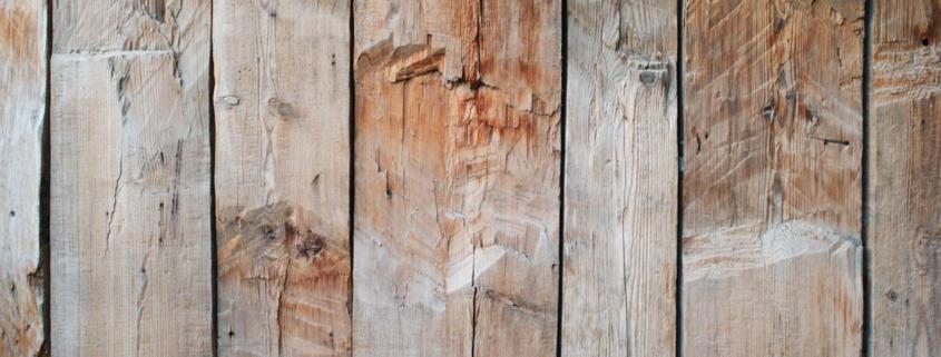 suszenie drewna pakobud