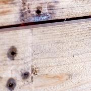 skrzynie drewniane Pako-Bud