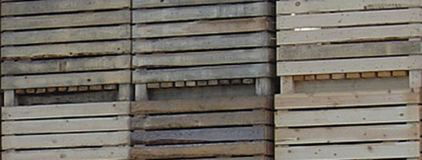 skrzyniopalety drewniane Pako-Bud